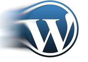 tertemiz-wordpress